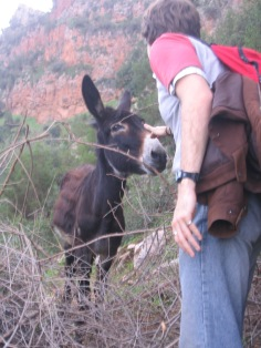 20-something-Chris was also unfazed by stray donkeys